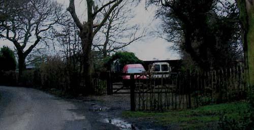 Driveway 2007
