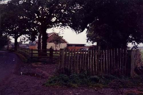 Driveway 1985